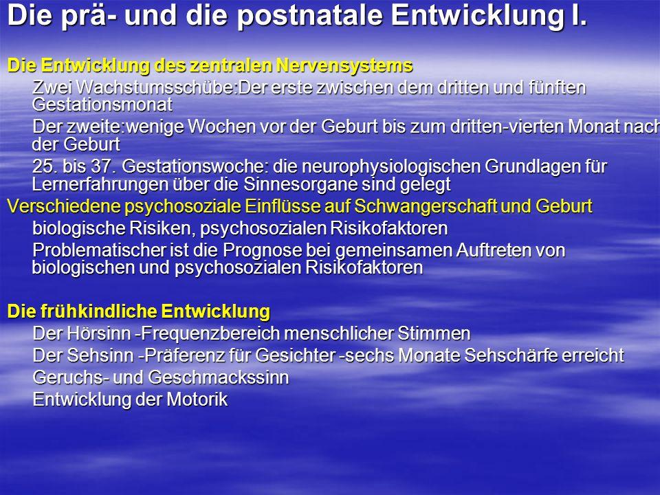 Die soziokulturellen Einflüsse II.