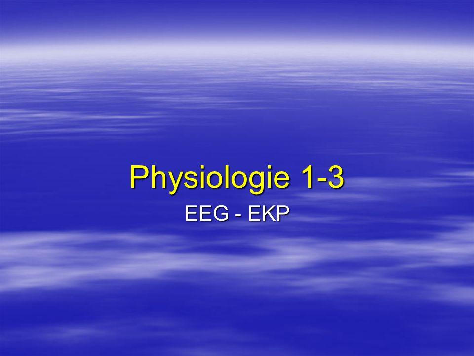 Physiologie 1-3 EEG - EKP