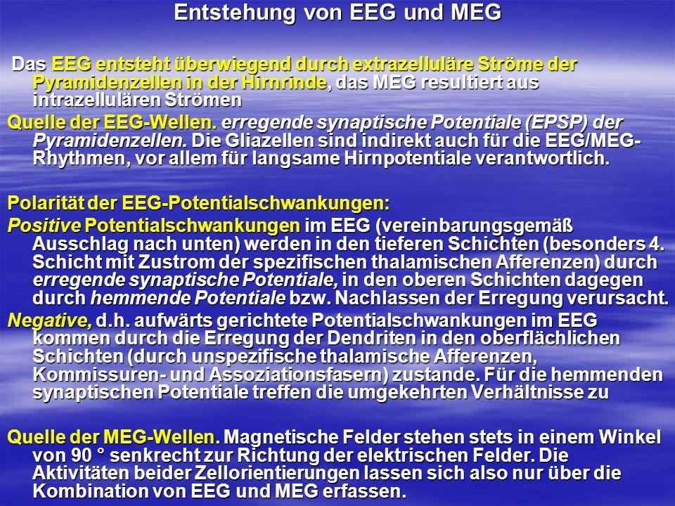 Entstehung von EEG und MEG Das EEG entsteht überwiegend durch extrazelluläre Ströme der Pyramidenzellen in der Hirnrinde, das MEG resultiert aus intra
