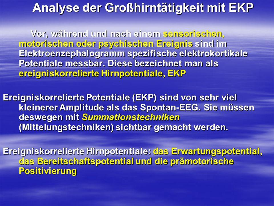 Analyse der Großhirntätigkeit mit EKP Analyse der Großhirntätigkeit mit EKP Vor, während und nach einem sensorischen, motorischen oder psychischen Ere