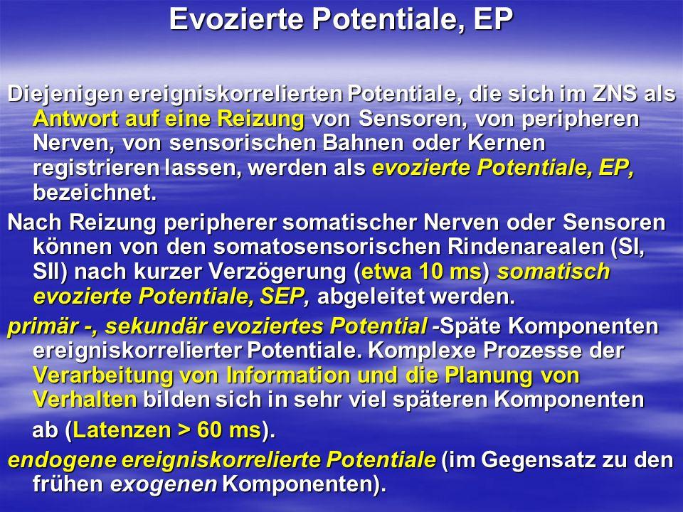 Evozierte Potentiale, EP Diejenigen ereigniskorrelierten Potentiale, die sich im ZNS als Antwort auf eine Reizung von Sensoren, von peripheren Nerven,