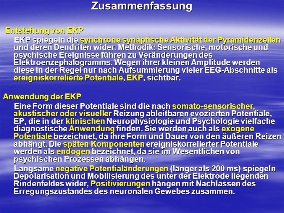 Zusammenfassung Entstehung von EKP Entstehung von EKP EKP spiegeln die synchrone synaptische Aktivität der Pyramidenzellen und deren Dendriten wider.