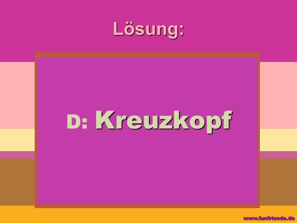Lösung: Kreuzkopf D: Kreuzkopf