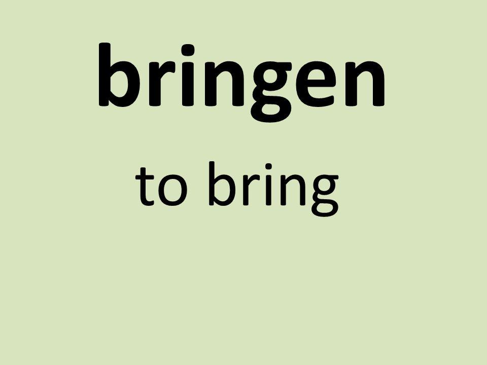 bringen to bring