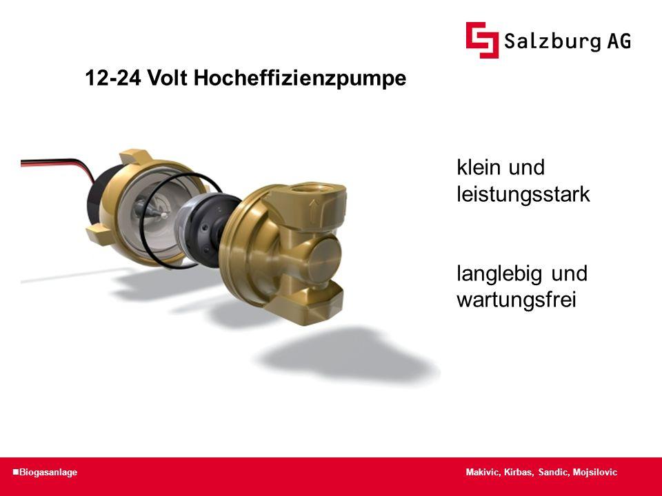 Makivic, Kirbas, Sandic, Mojsilovic Biogasanlage 12-24 Volt Hocheffizienzpumpe klein und leistungsstark langlebig und wartungsfrei