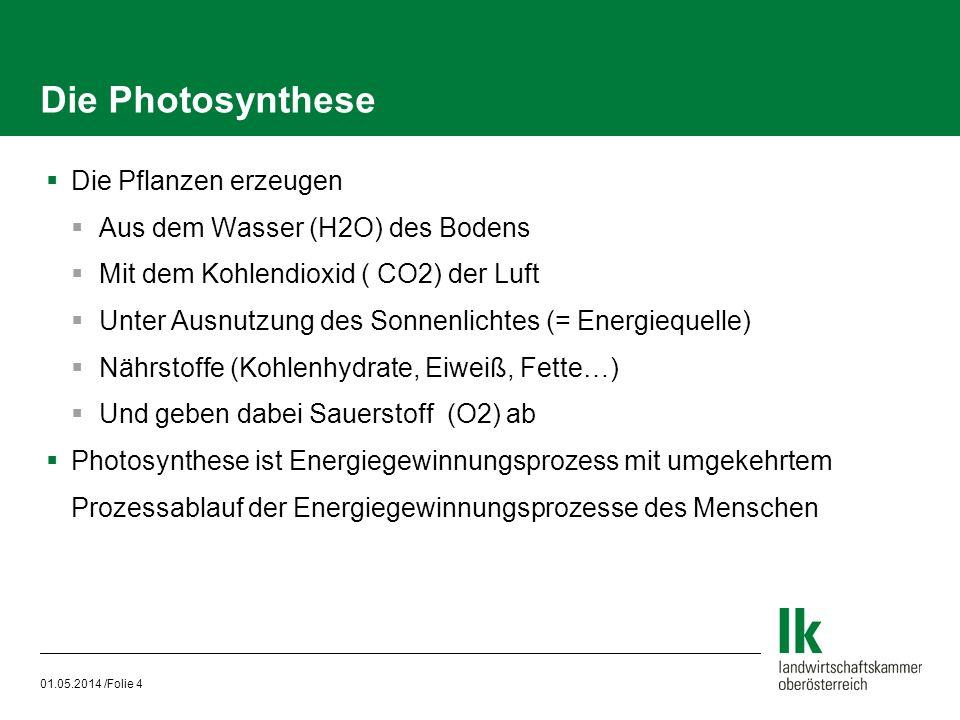 01.05.2014 /Folie 4 Die Photosynthese Die Pflanzen erzeugen Aus dem Wasser (H2O) des Bodens Mit dem Kohlendioxid ( CO2) der Luft Unter Ausnutzung des