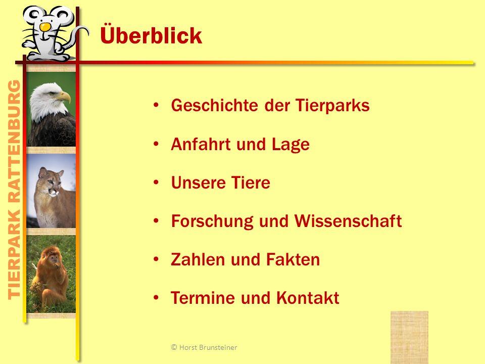 TIERPARK RATTENBURG Impressionen © Horst Brunsteiner