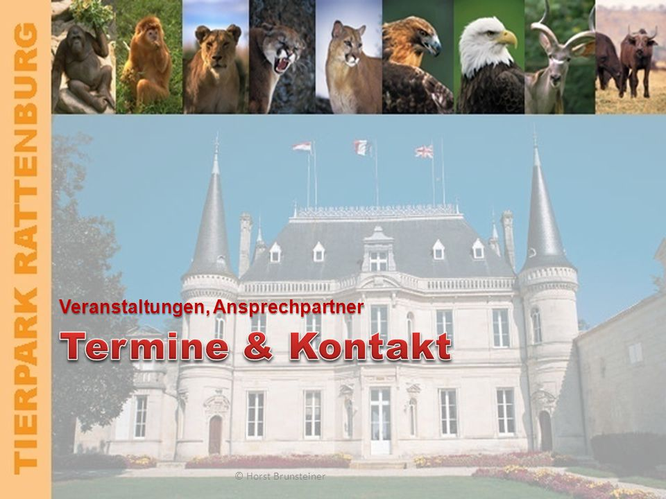TIERPARK RATTENBURG Investitionen © Horst Brunsteiner