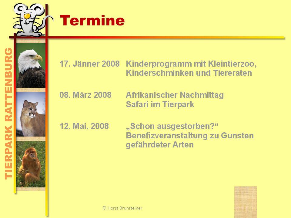 Veranstaltungen, Ansprechpartner © Horst Brunsteiner