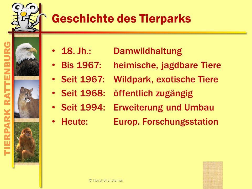TIERPARK RATTENBURG Investitionen © Horst Brunsteiner