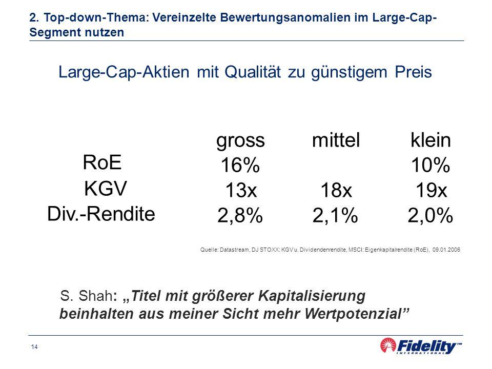 14 Large-Cap-Aktien mit Qualität zu günstigem Preis 2.