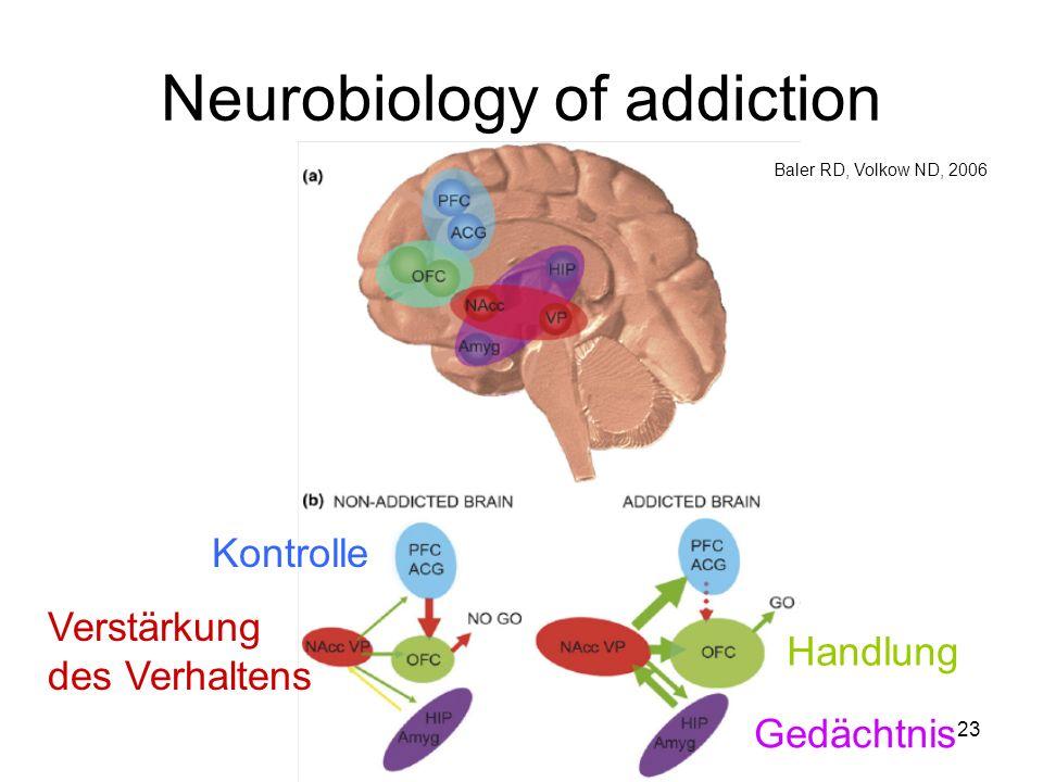 Neurobiology of addiction Kontrolle Verstärkung des Verhaltens Handlung Gedächtnis Baler RD, Volkow ND, 2006 23