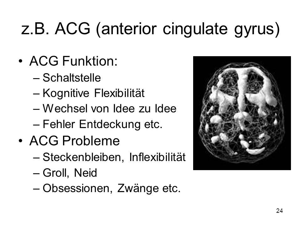 z.B. ACG (anterior cingulate gyrus) ACG Funktion: –Schaltstelle –Kognitive Flexibilität –Wechsel von Idee zu Idee –Fehler Entdeckung etc. ACG Probleme