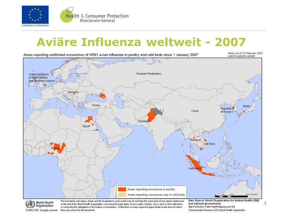 14 Februar 2007Ökosoziales Forum - Wintertagung 2007 4 Aviäre Influenza weltweit - 2007