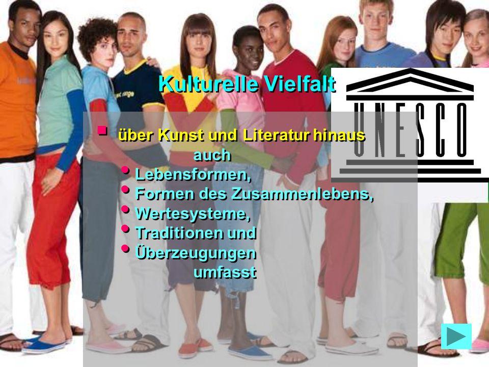 Umsetzung Förderung der sprachlichen Vielfalt im Cyberspace Überbrückung der digitalen Kluft Enge Beteiligung der Zivilgesell- schaft Umsetzung Förderung der sprachlichen Vielfalt im Cyberspace Überbrückung der digitalen Kluft Enge Beteiligung der Zivilgesell- schaft Kulturelle Vielfalt