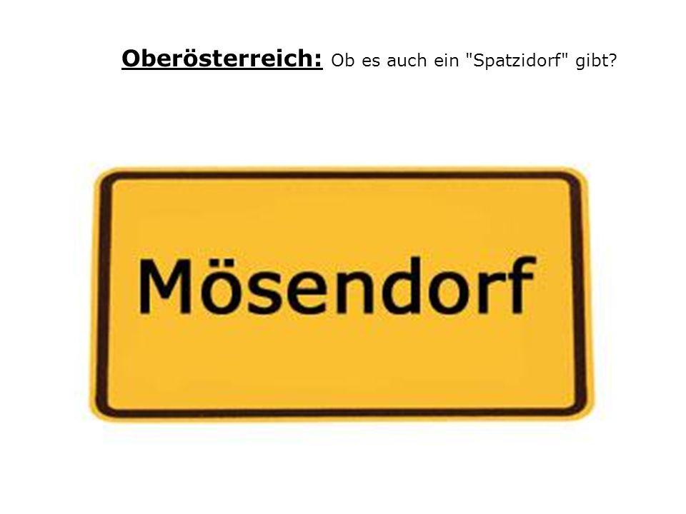 Oberösterreich: Ob es auch ein Spatzidorf gibt