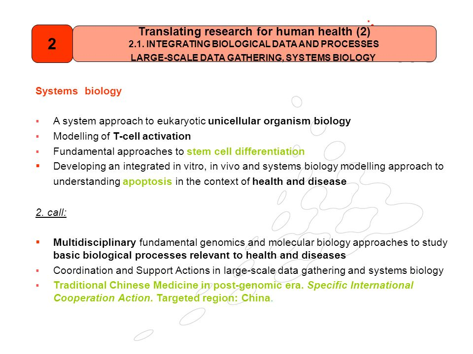 Systems biology A system approach to eukaryotic unicellular organism biology Modelling of T-cell activation Fundamental approaches to stem cell differentiation Developing an integrated in vitro, in vivo and systems biology modelling approach to understanding apoptosis in the context of health and disease 2.