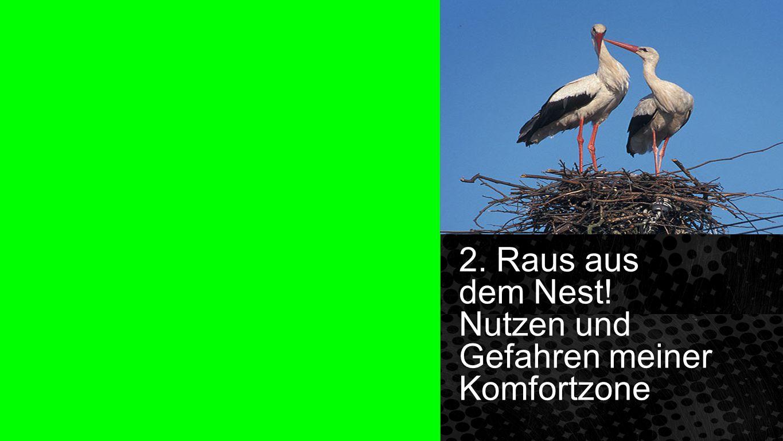 Spalte 2. Raus aus dem Nest! Nutzen und Gefahren meiner Komfortzone 2. Raus aus dem Nest! Nutzen und Gefahren meiner Komfortzone