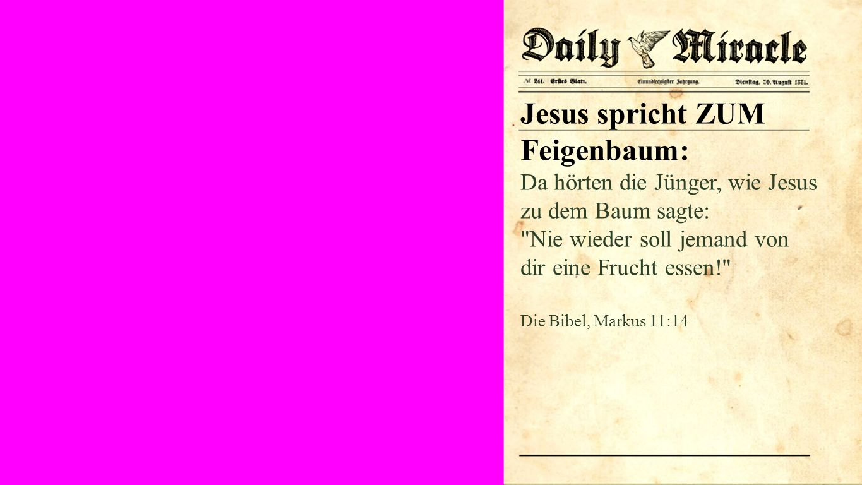Seiteneinblender Jesus spricht ZUM Feigenbaum: Da hörten die Jünger, wie Jesus zu dem Baum sagte: Nie wieder soll jemand von dir eine Frucht essen! Die Bibel, Markus 11:14
