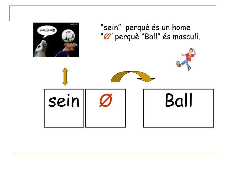 sein ØBall sein perquè és un home Ø perquè Ball és masculí.