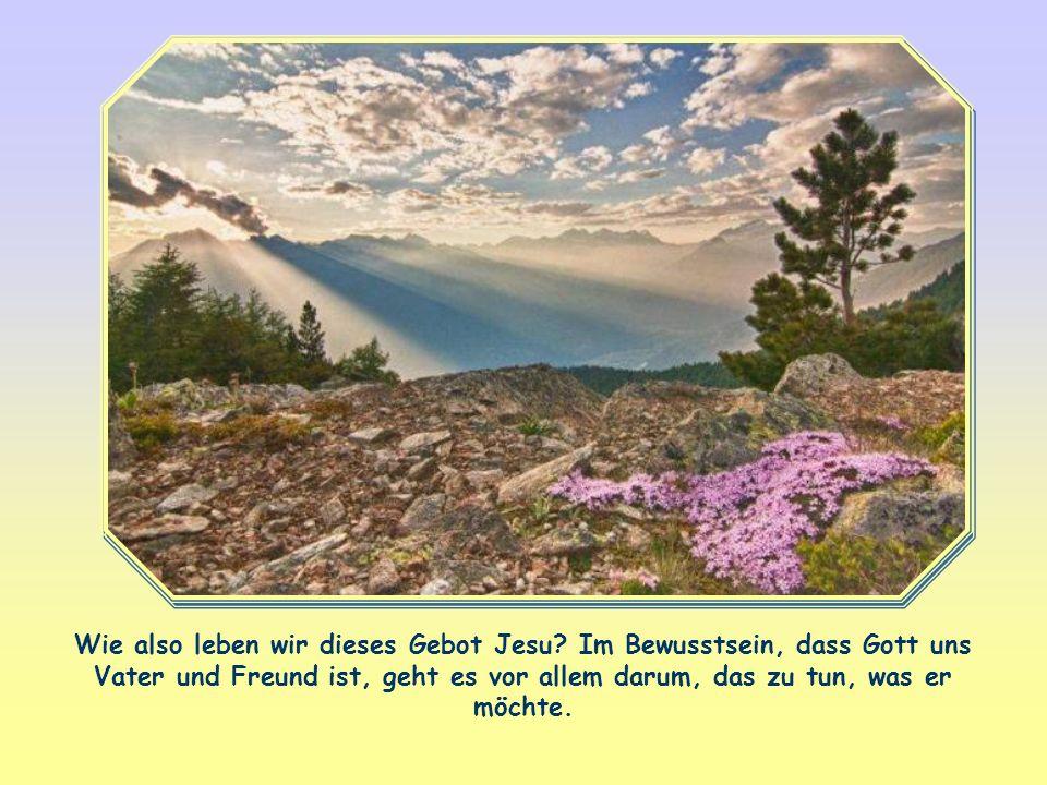 Du sollst den Herrn, deinen Gott, lieben mit ganzem Herzen, mit ganzer Seele und mit all deinen Gedanken.