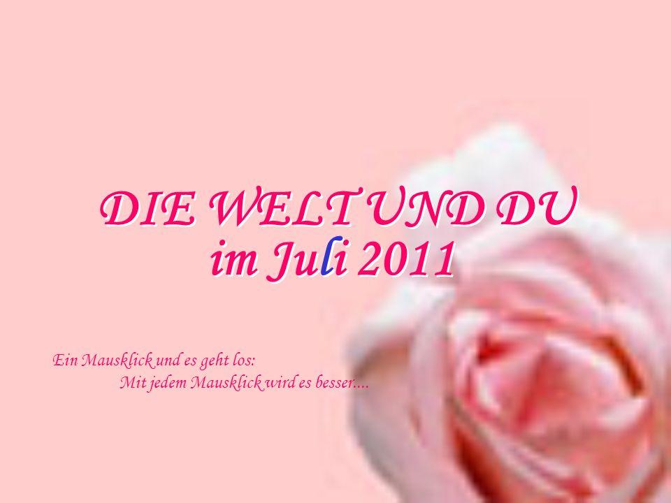DIE WELT UND DU Ein Mausklick und es geht los: Mit jedem Mausklick wird es besser.... im Juli 2011