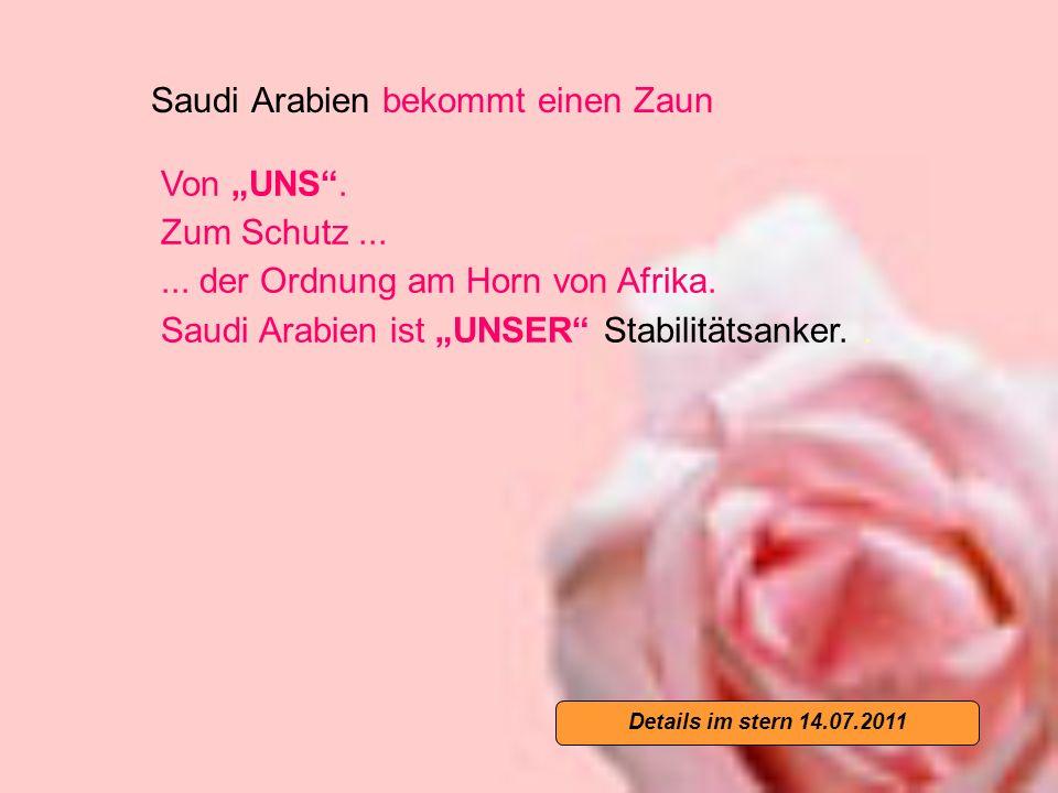 Saudi Arabien bekommt einen Zaun Von UNS. Zum Schutz......