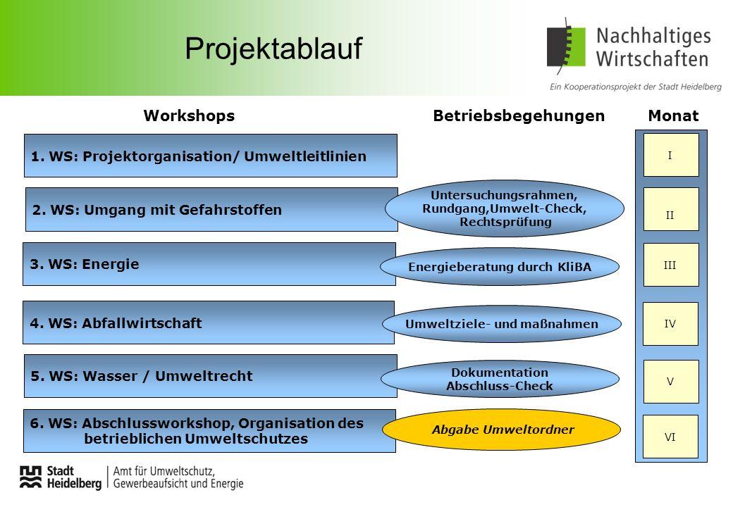 Projektablauf WorkshopsBetriebsbegehungenMonat 1. WS: Projektorganisation/ Umweltleitlinien 2. WS: Umgang mit Gefahrstoffen 3. WS: Energie 4. WS: Abfa