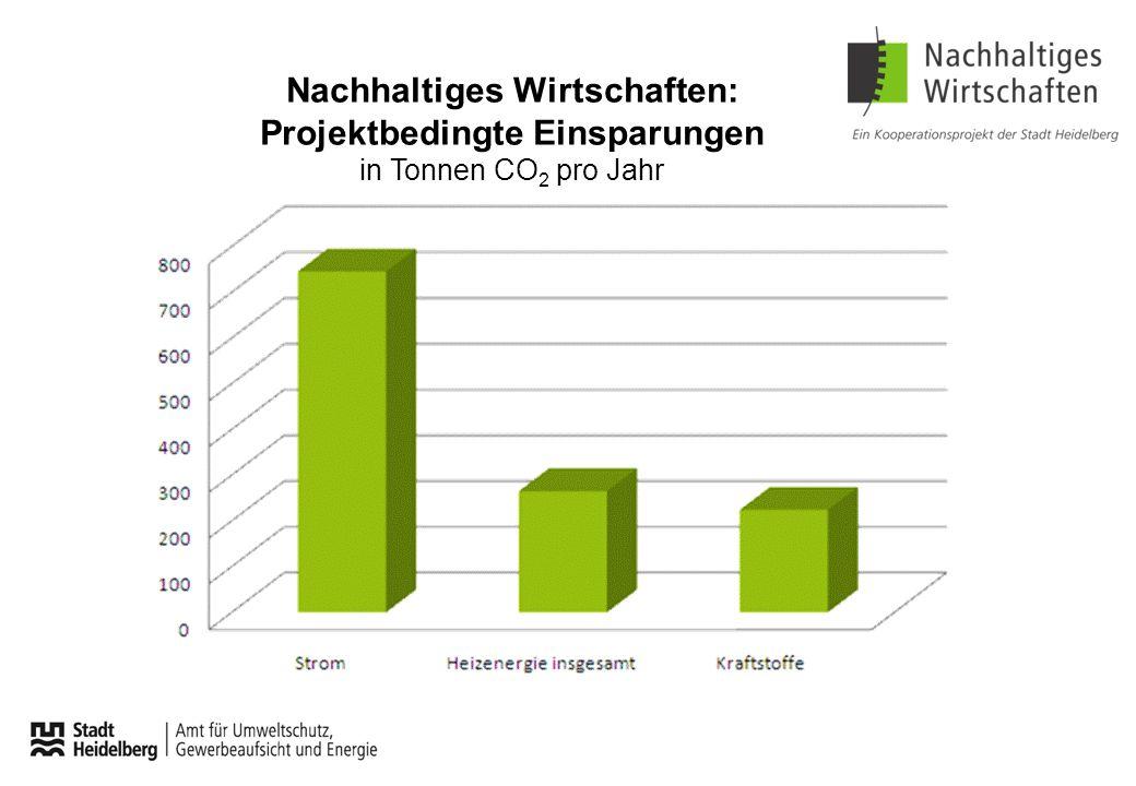 Nachhaltiges Wirtschaften: Projektbedingte Einsparungen in Tonnen CO 2 pro Jahr