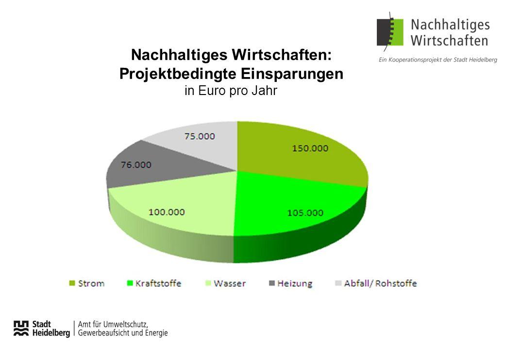 Nachhaltiges Wirtschaften: Projektbedingte Einsparungen in Euro pro Jahr