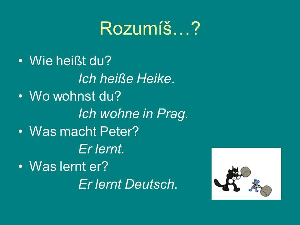 Rozumíš…? Wie heißt du? Ich heiße Heike. Wo wohnst du? Ich wohne in Prag. Was macht Peter? Er lernt. Was lernt er? Er lernt Deutsch.