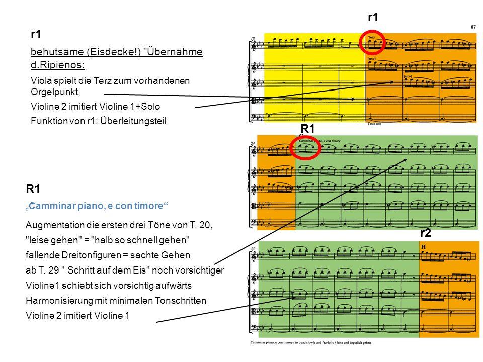 r1 behutsame (Eisdecke!) Übernahme d.Ripienos: Viola spielt die Terz zum vorhandenen Orgelpunkt, Violine 2 imitiert Violine 1+Solo Funktion von r1: Überleitungsteil r1 R1 r2 Camminar piano, e con timore Augmentation die ersten drei Töne von T.
