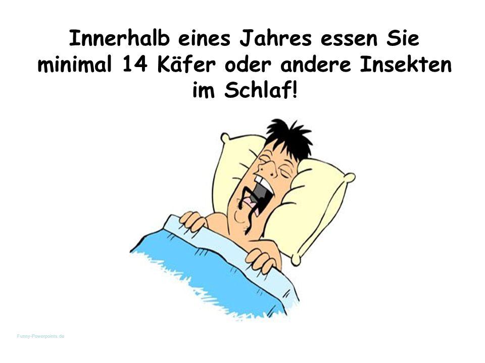 Innerhalb eines Jahres essen Sie minimal 14 Käfer oder andere Insekten im Schlaf! Funny-Powerpoints.de