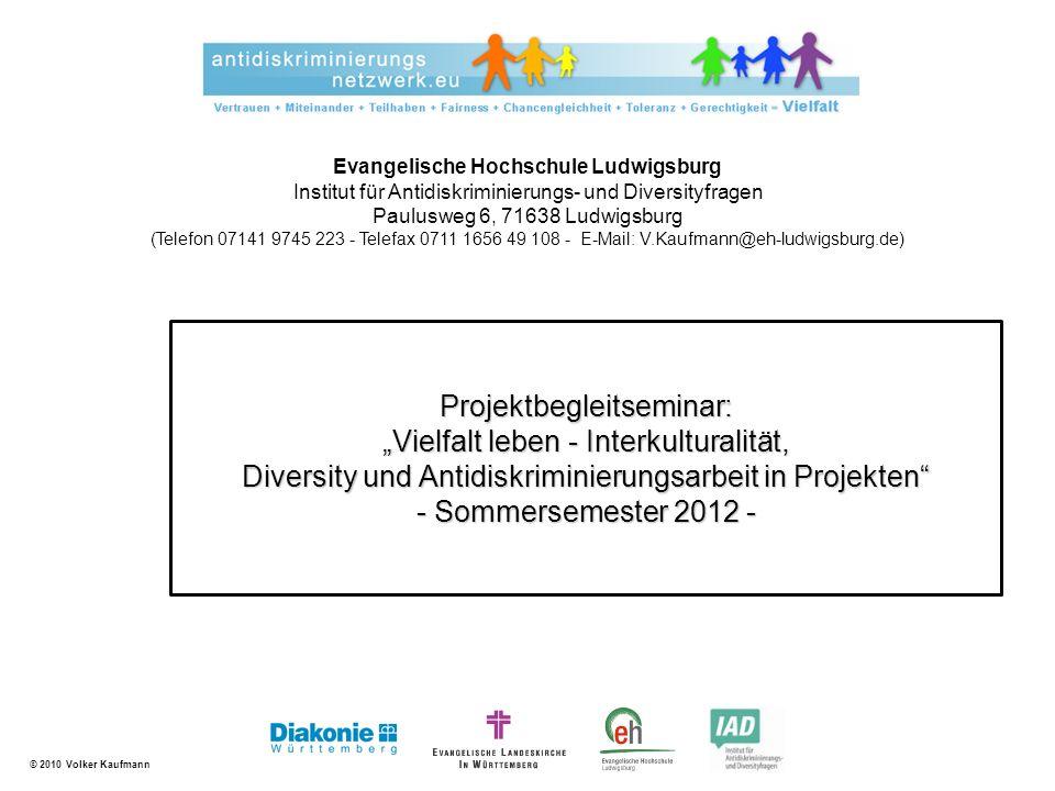 © 2010 Volker Kaufmann Projektmanagement Methoden der empirischen Sozialforschung Interkulturelles Lernen Menschenrechte im internationalen Kontext Antidiskriminierung und Diversity Sonstiges 2 Wissensinputs