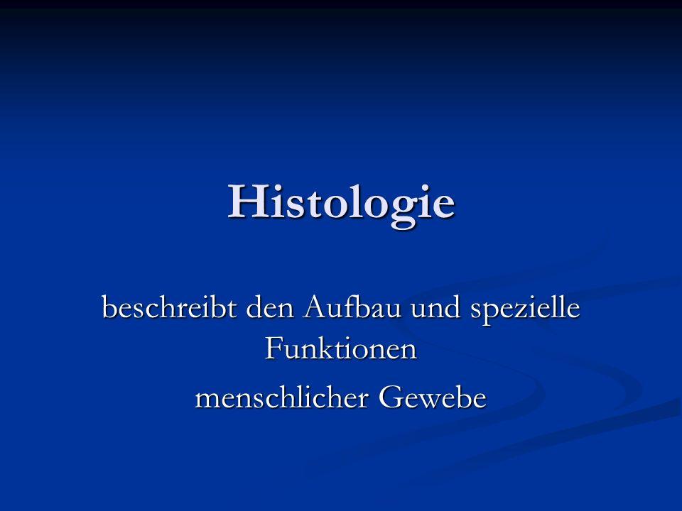 Histologie beschreibt den Aufbau und spezielle Funktionen menschlicher Gewebe