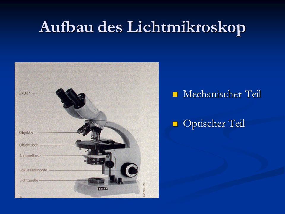 Aufbau des Lichtmikroskop Mechanischer Teil Optischer Teil