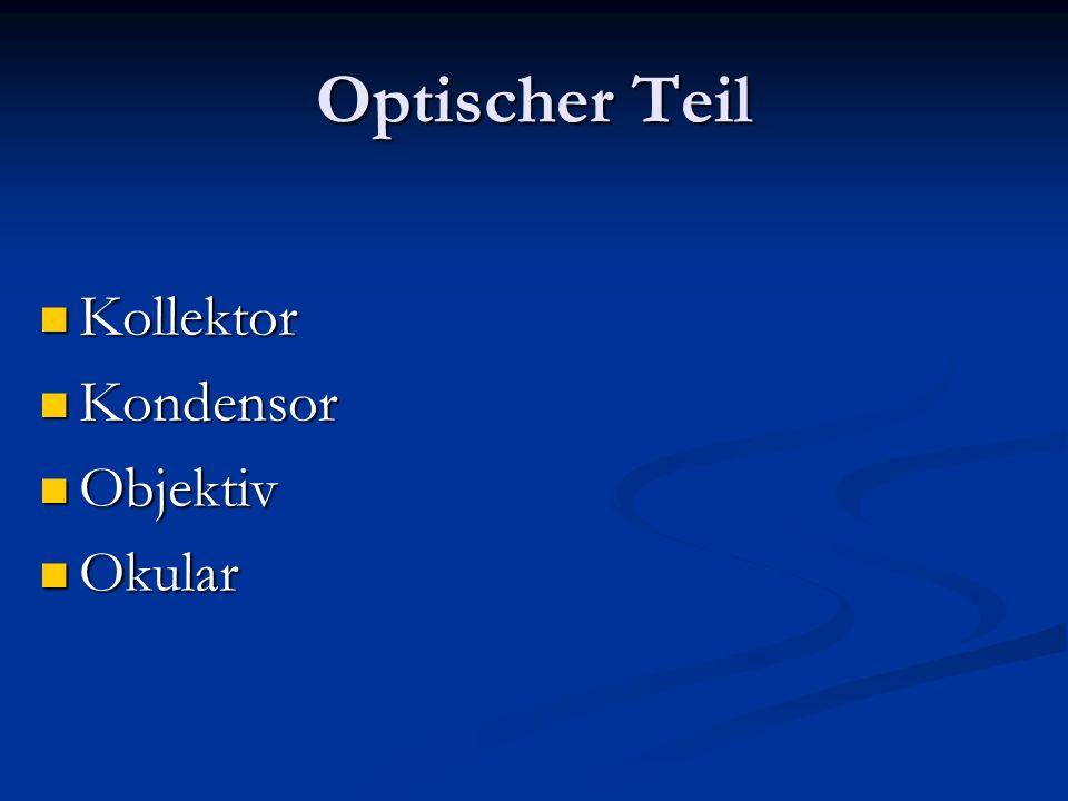Kollektor Kollektor Kondensor Kondensor Objektiv Objektiv Okular Okular