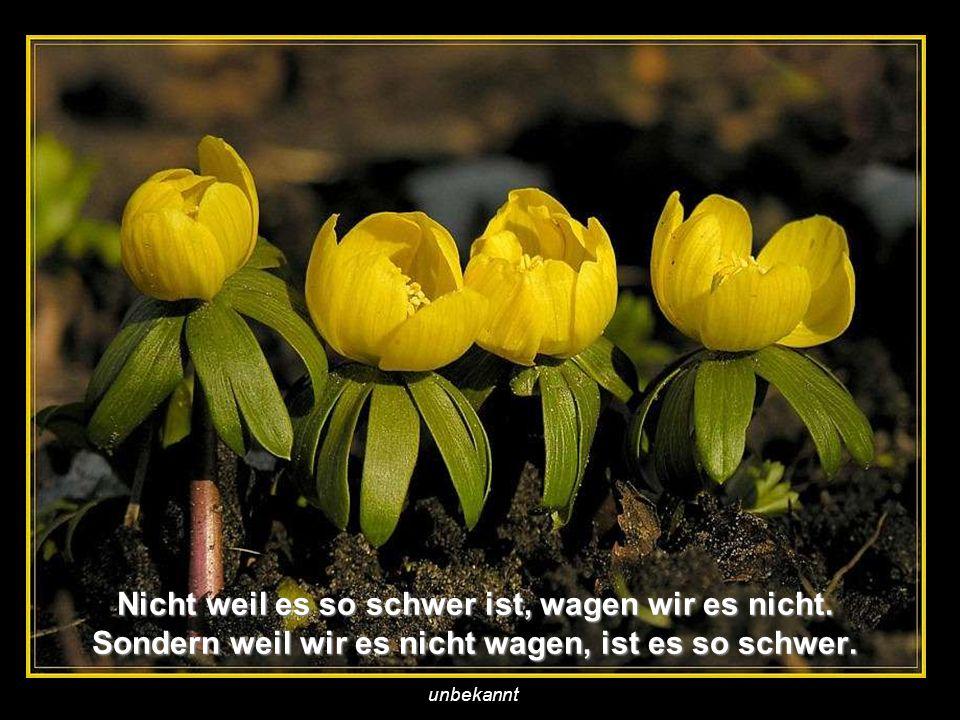 verteilt durch www.funmail2u.dewww.funmail2u.de Weine nicht, weil es vorbei ist, sondern lächle, weil es schön war. unbekannt