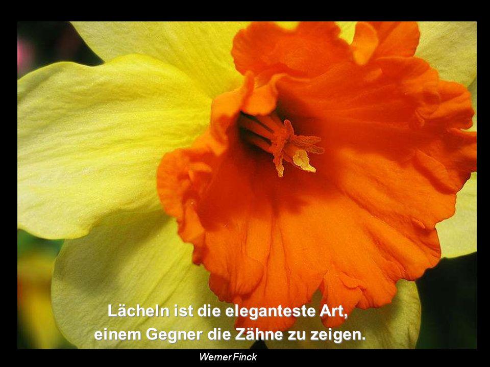 Weicher ist stärker als hart, Wasser stärker als Fels, Wasser stärker als Fels, Liebe stärker als Gewalt. Liebe stärker als Gewalt. Hermann Hesse