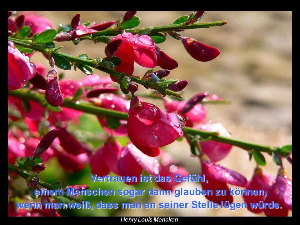 Menschen können wohl alle Blumen abschneiden, aber sie können den Frühling nicht verhindern. aber sie können den Frühling nicht verhindern. Pablo Neru