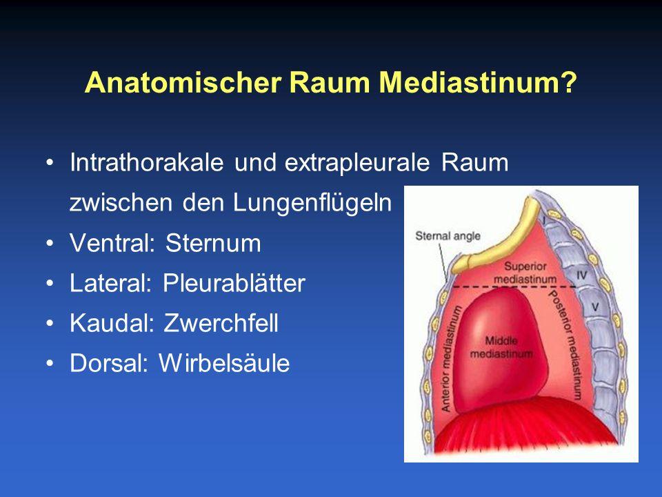 Weitere Differenzierung des Mediastinums: –Oberes Mediastinum: einschliesslich BWK4 –Unteres Mediastinum: –Vorderes: Sternum bis Herz –Mittleres: Herz –Hinteres: Herz bis Wirbelsäule