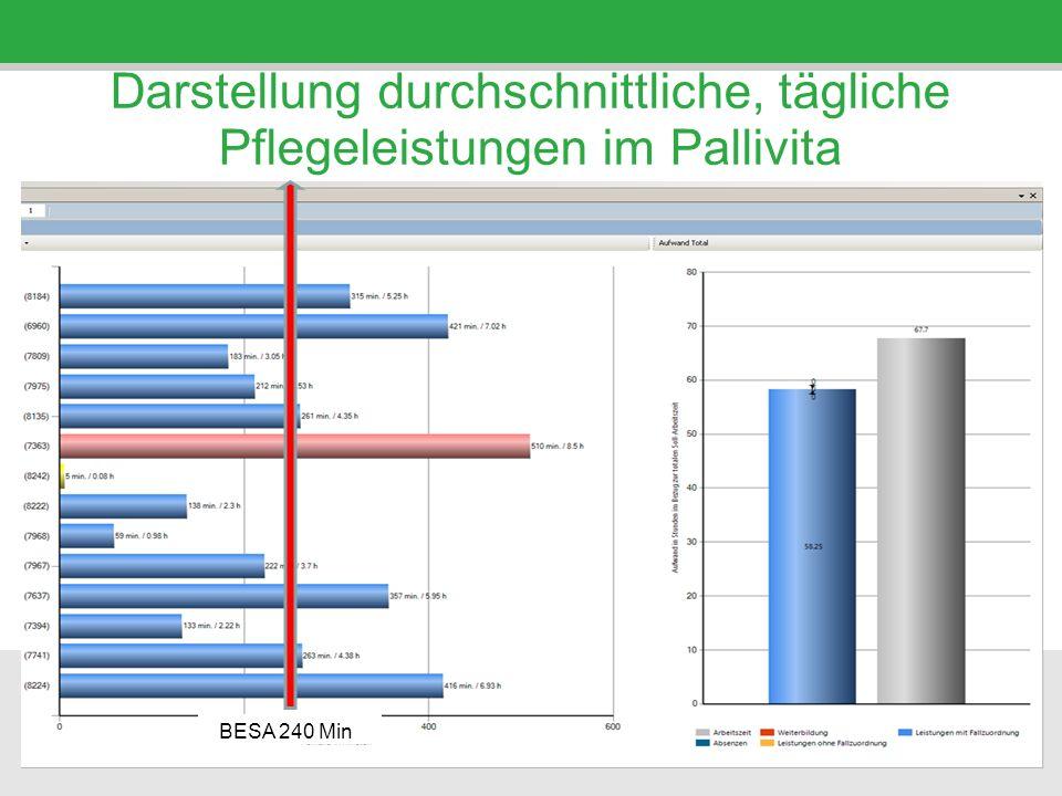Darstellung durchschnittliche, tägliche Pflegeleistungen im Pallivita BESA 240 Min.