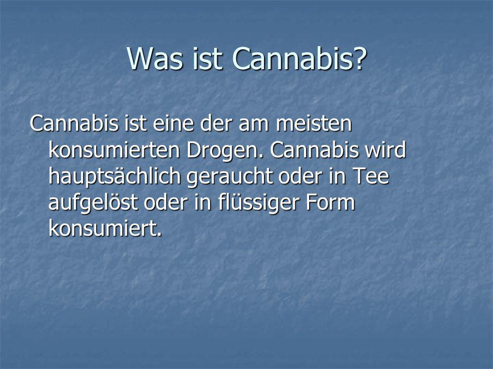 Was ist Cannabis? Cannabis ist eine der am meisten konsumierten Drogen. Cannabis wird hauptsächlich geraucht oder in Tee aufgelöst oder in flüssiger F