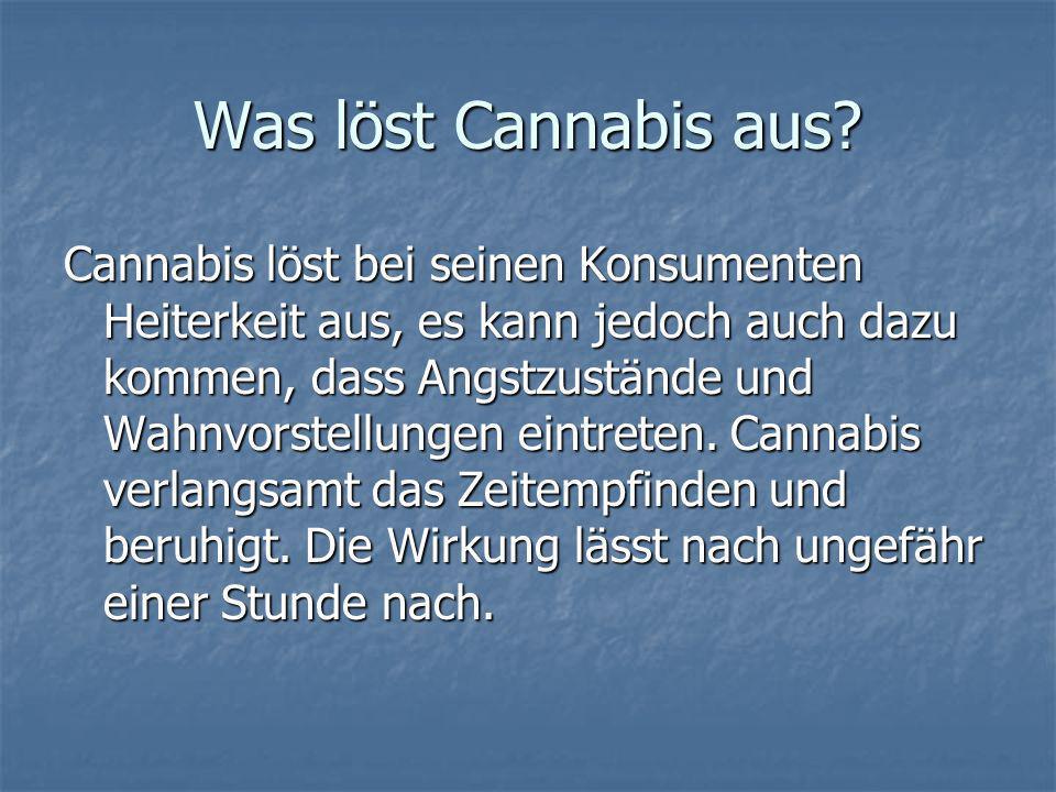 Was löst Cannabis aus? Cannabis löst bei seinen Konsumenten Heiterkeit aus, es kann jedoch auch dazu kommen, dass Angstzustände und Wahnvorstellungen