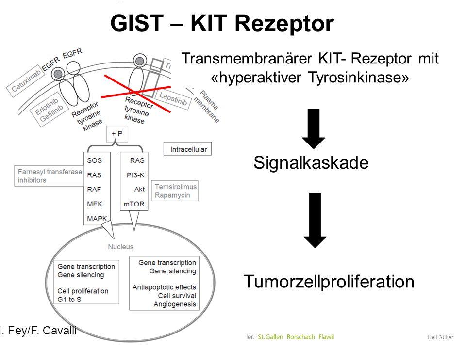 GIST Onkologische Therapie Ueli Güller Signalkaskade Tumorzellproliferation Transmembranärer Rezeptor M. Fey/F. Cavalli Transmembranärer KIT- Rezeptor