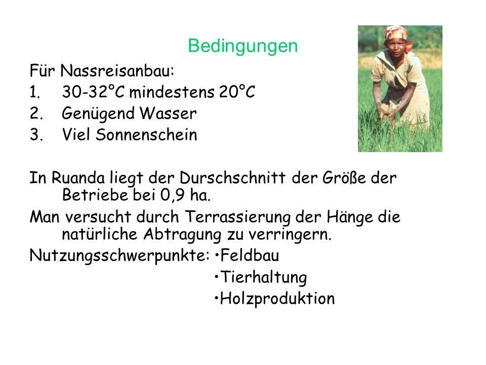 Verbesserungsvorschläge Feldbau: häufiger Fruchtwechsel Mischkulturen Gründüngung Baumreihen und Hecken gegen Erosion Tierhaltung: Stallhaltung Hecken liefern Mulch für Viehfutter