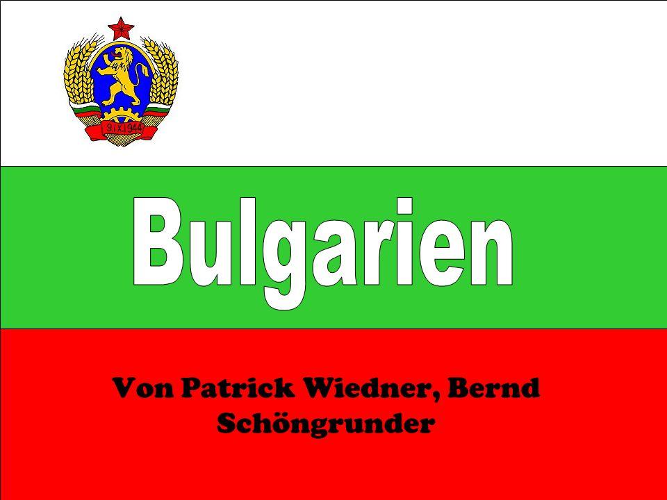 Von Patrick Wiedner, Bernd Schöngrunder