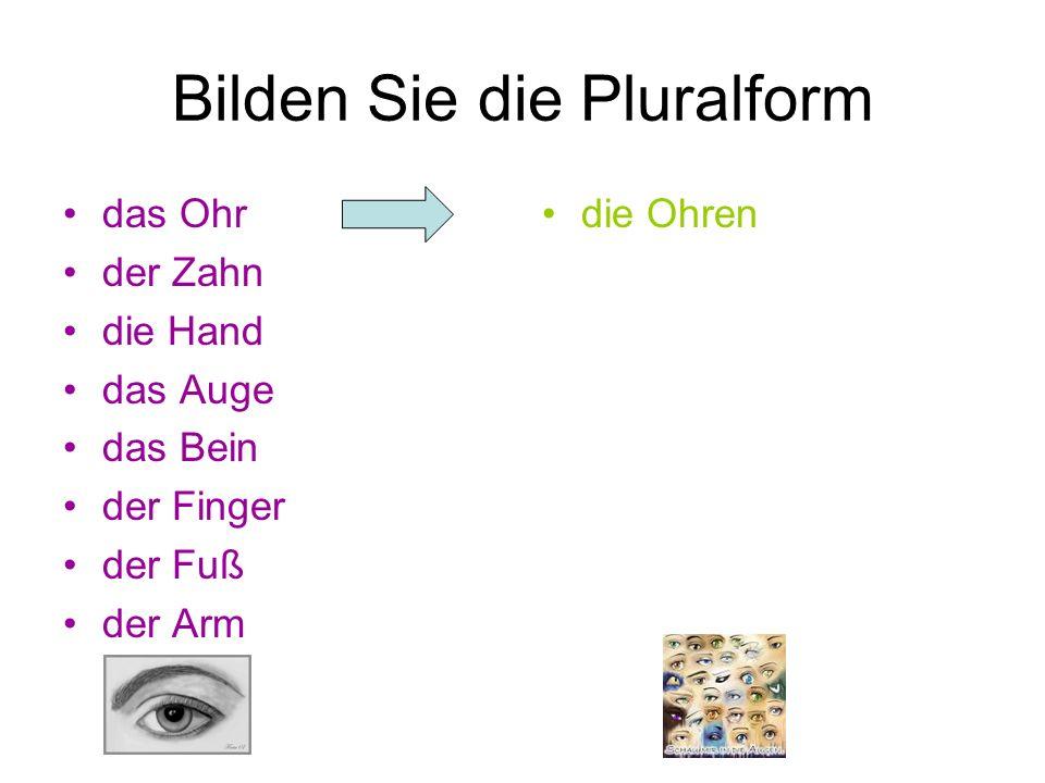 Bilden Sie die Pluralform das Ohr der Zahn die Hand das Auge das Bein der Finger der Fuß der Arm die Ohren