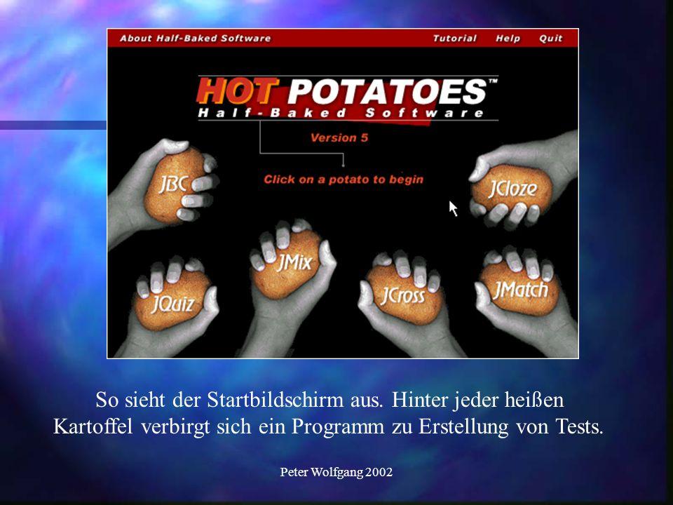 Peter Wolfgang 2002 Einen Multiple Choice Test erstellen.