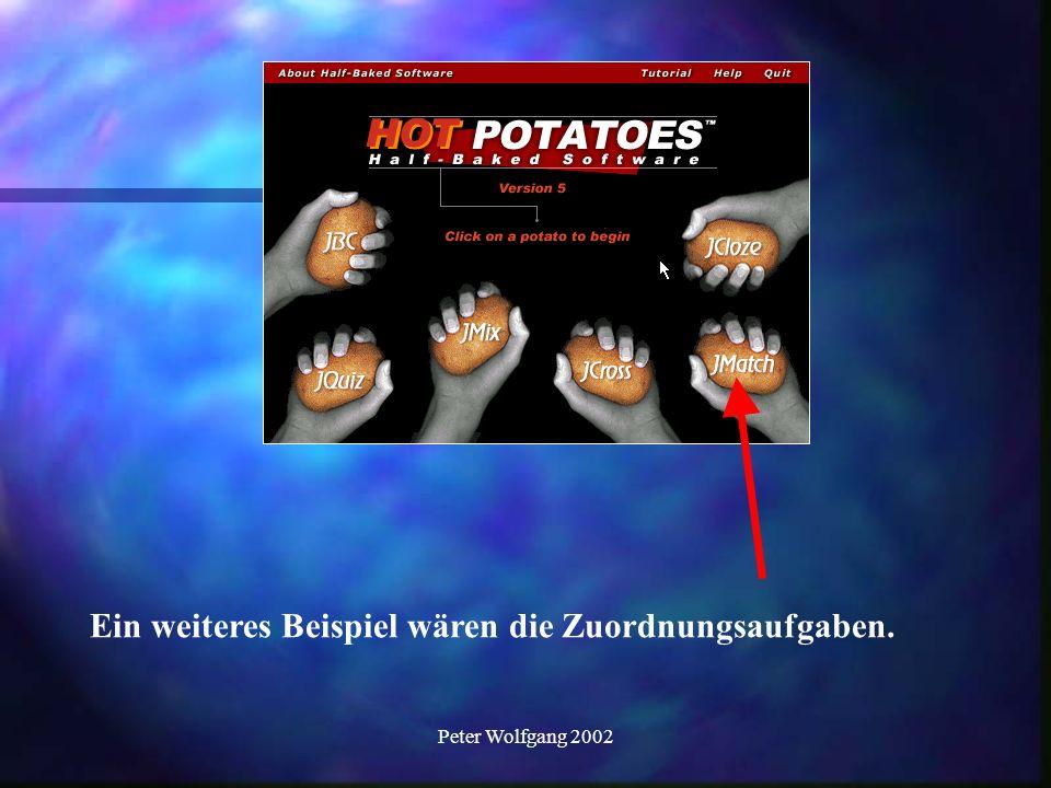Peter Wolfgang 2002 Ein weiteres Beispiel wären die Zuordnungsaufgaben.